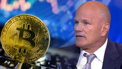 Photo of No Altcoin Pumps During The Ongoing Bull Run, Says Mike Novogratz