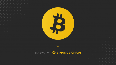 BTC-Pegged Tokens on Binance Chain