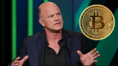 Bitcoin Will Be Stabilized Between $10,000 - $14,000, Says Mike Novogratz