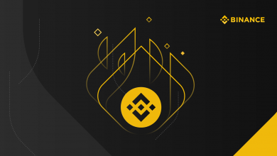 BNB Burn - Binance Coin Burn