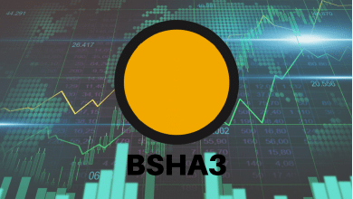 Photo of 119X Growth in 30 Days by BSHA3 Has Flipped The Viewpoint About FPGA Investments