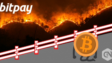 BitPay Blocks $100K Bitcoin Donation to Amazon Rainforest Fire Charity