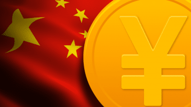 China's Digital Currency