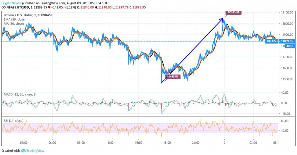 Bitcoin Price Analysis: BTC Trend Appears Volatile, Trades below