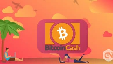 Photo of Bitcoin Cash Marked an Intraday Hike of Almost 4%