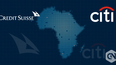 Citigroup and Credit Suisse Focus on State Asset Sales in Africa