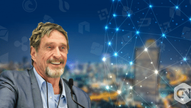 John McAfee Criticizes Centralized Exchanges for 'Controlling Entire Market'