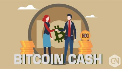Photo of Bitcoin Cash (BCH) Crashes Hard; Trades at the Lowest in Fortnight