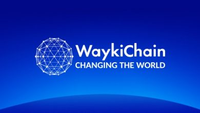 Photo of WaykiChain Partners with Avione Jet to Introduce its Stablecoin WUSD to Jet Renting