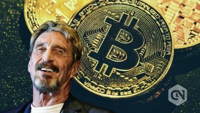 Photo of Altcoin Enthusiast John McAfee Says Bitcoin is the True 'Shitcoin'