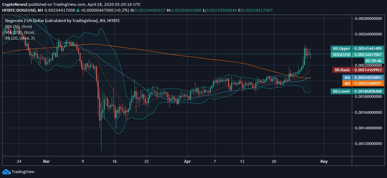 Dogecoin Retains a Steady Support Yet Faces Volatility