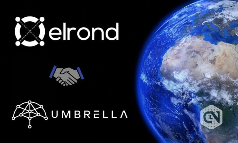 Umbrella Partners Elrond Network to Provide Oracle Services