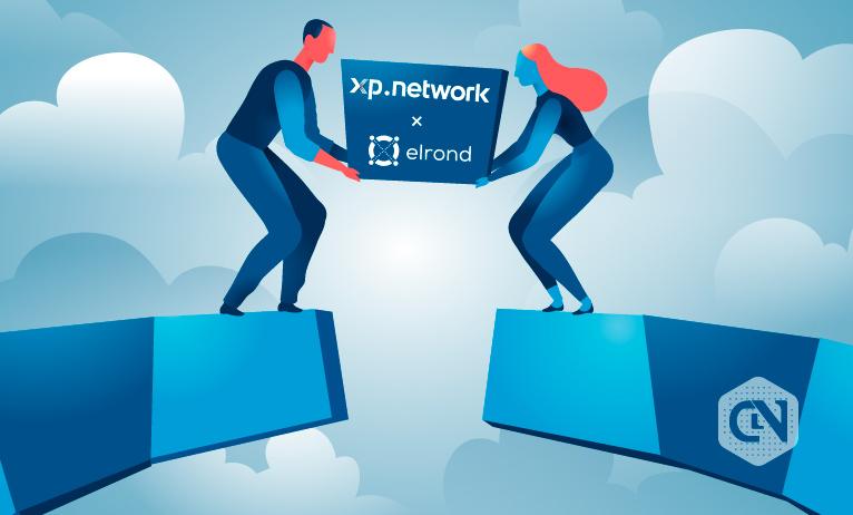 XP Network to Develop Elrond-Polkadot Bridge to Build NFT dApps